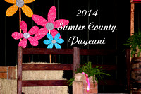 2014 Baby Pageant
